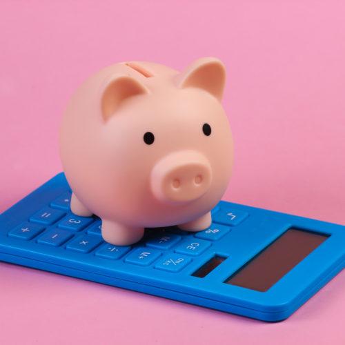 Swoosh Finance budget calculator